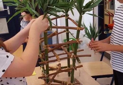Bamboestieken